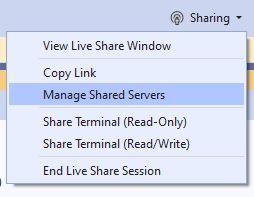 Visual Studio 2019 Community Live Sharing