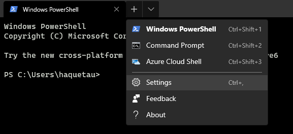 Install Windows Terminal settings.json