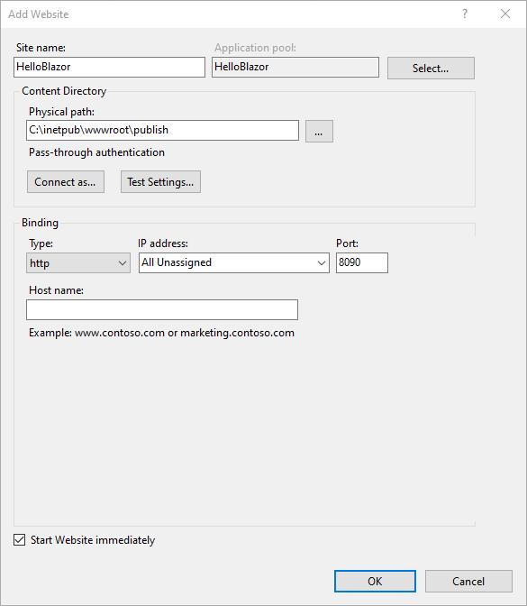 Publish a Blazor Server Application to IIS - Website details
