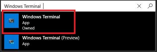 Install Windows Terminal - Windows store